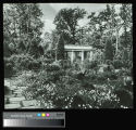 Ryerson, Edward Larned, Sr. and Mary Pringle Mitchell, Estate, Garden