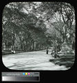 Central Park, The Mall, with Walter Scott statue
