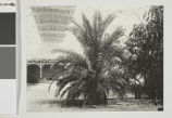 World's Columbian Exposition, Horticultural Building
