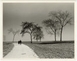 [Couple Walking on Path with Sparse Trees]